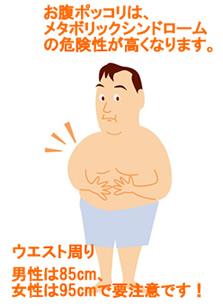 お腹ポッコリは、メタボリックシンドロームの危険性が高くなります。